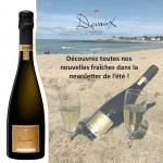 Newsletter Champagne Devaux été 2020